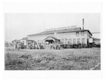 Napanee Canning Factory